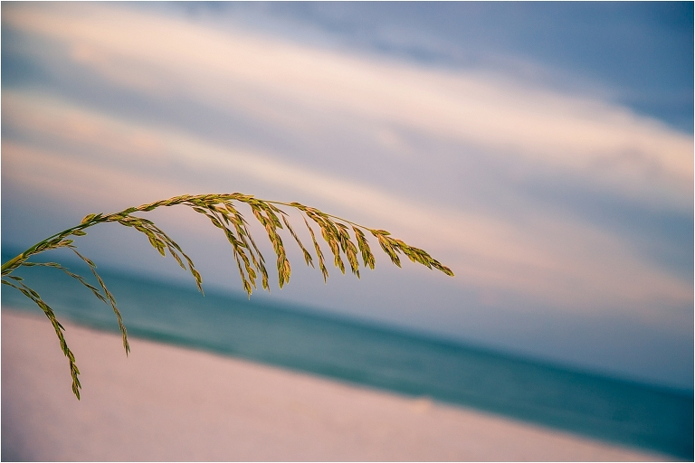 joyful sarasota photography - sunrise at lido beadh